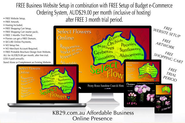 KB29 Websites